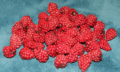 NICE LOT OF 58 ARTIFICIAL RASPBERRIES FOR BOWL FILLERS OR CRAFT PROJECTS!