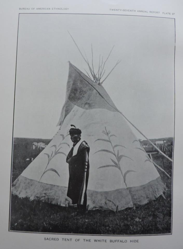 Sacred Tent Of The White Buffalo Hide Native American Ethnology Art Print 1911