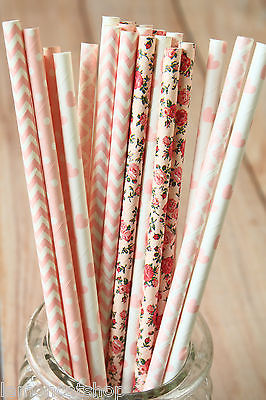 Pink Dresses Paper Straws 25pc multi pack floral chevron wedding party supplies