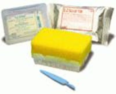 Vet Office BD E-Z Scrub Surgical Scrub Brush Povidone Iodine 1% 30CT Brushes