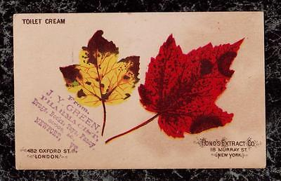 Two Autumn Maple Leaves Pond's Extract Co Toilet Cream Victorian Trade Card