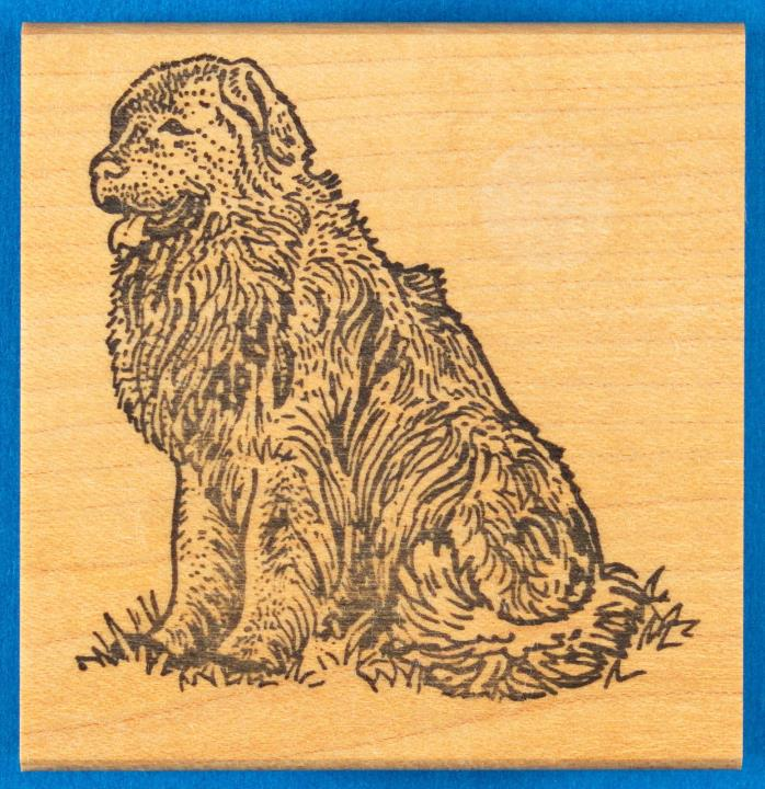 Newfoundland Dog Rubber Stamp - Big Furry Dog Sitting - The Stamp Pad Co.