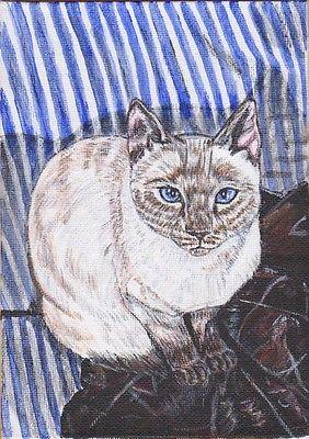 5x7 custom pet portrait painting dog cat rabbit bird horse lizard ferret art