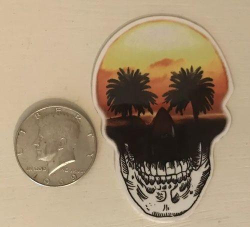 Lost Enterprises Sunset Skull Surf Skate Sticker Weatherproof Rare Decal