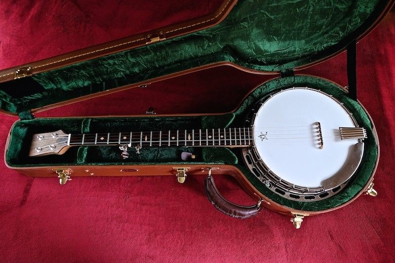 CUSTOM PROFESSIONAL ZYCHOWSKI FIVE STRING BANJO