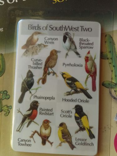 Identiflyer SongCard Birds of SouthWest Two Songbirds Songplayer