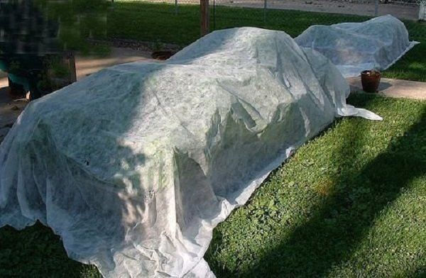 Heavy Floating Row Cover and Plant Blanket, 0.9oz Fabric of 6x30ft for Sun Shade
