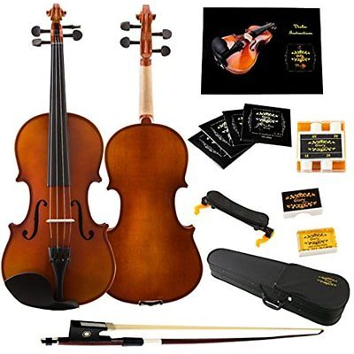 Glory 4/4 Solid Wood Violin With Case Shoulder Rest Bow Rosin And Extra String