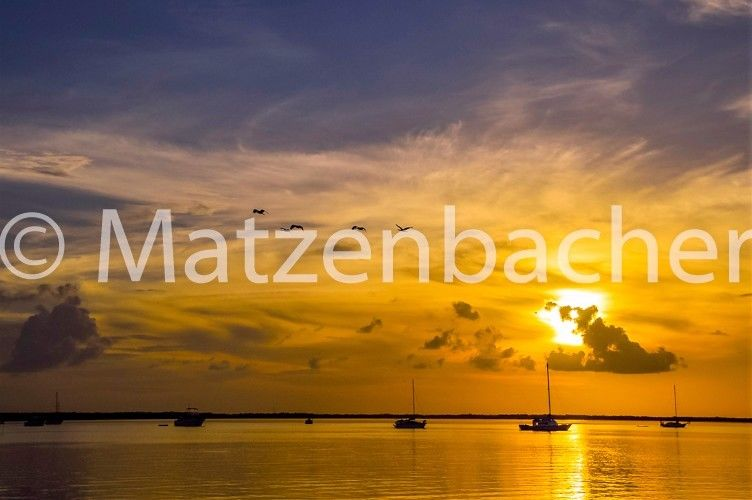 Digital photo picture wallpaper Sunset Foto Background Free Shipping Worldwid