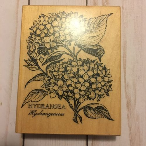 Vintage (1995) Hydrangea Rubber Stamp from Personal Stamp Exchange.