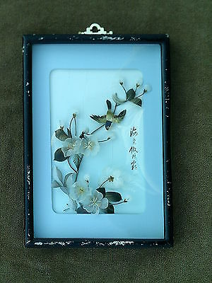 Antique - Asian - Feather Art - Shadow Box - Signed & Stamped -