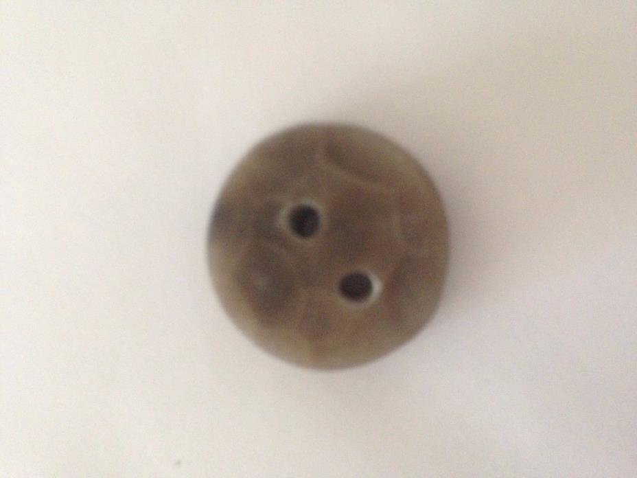 Petoskey Stone Button 44