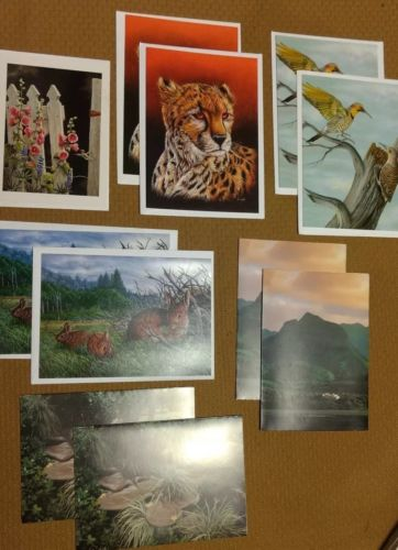 Blank Artistic and Scenic Cards