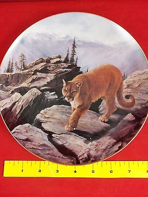 Collector Plate, Big Cats of the World. A Cougar.