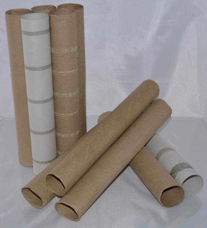 10 Empty Paper Towel Rolls Clean Cardboard Tubes - Free Shipping!