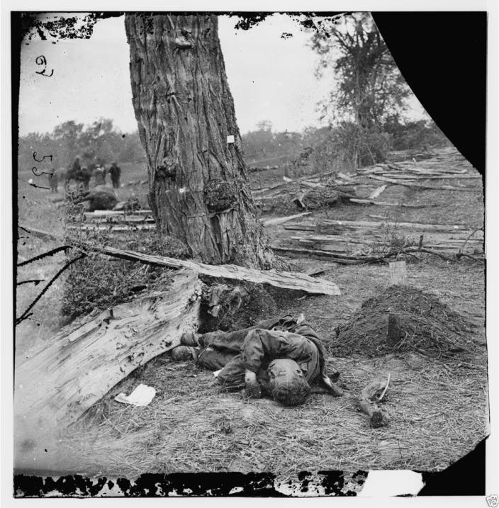 Confederate Dead Union Grave Antietam Sharpsburg 8x10 Civil War Photo 1862