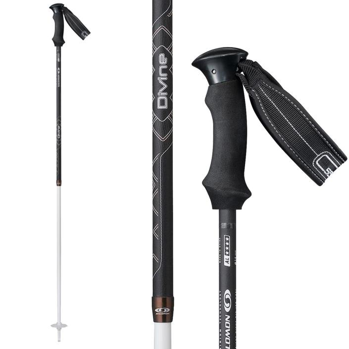 Salomon Divine Origins Skiing Pole (Black, 105)