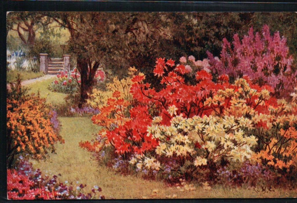 Unused FLOWERS and Gate Vintage Postcard