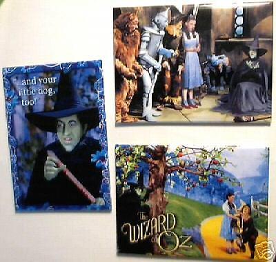 WIZARD of OZ Wicked Witch fridge 3 MAGNET SET