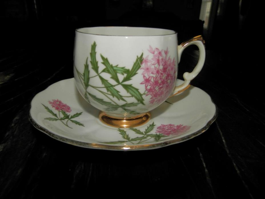 Royal Vale vintage bone china tea cup & saucer England #7193L
