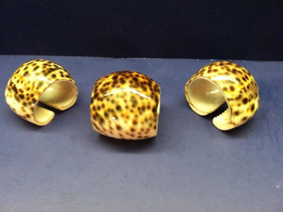 Napkin Ring Holder Tiger Cowrie Cut Ocean Sea Shell Set of 3