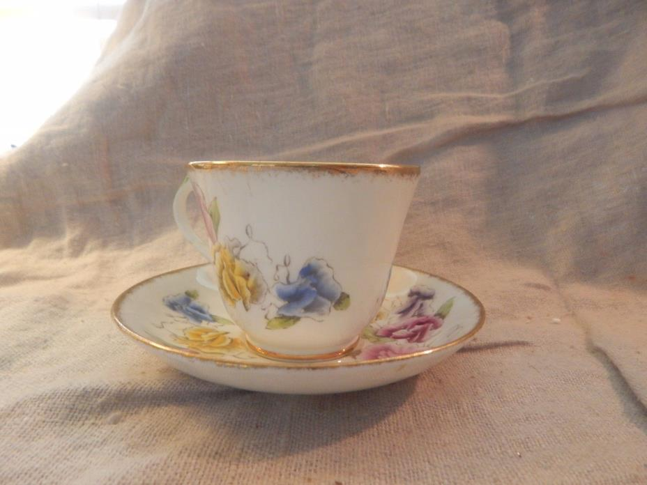 Vintage Salisbury Bone China Teacup and Saucer Floral
