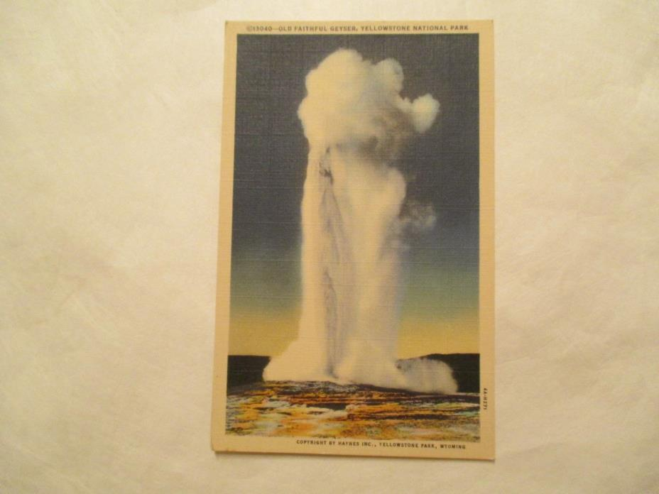 Old Faithful Geyser Yellowstone National Park Postcard