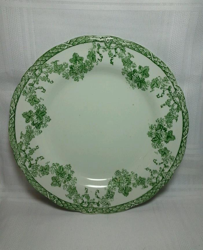 NEW WHARF POTTERY 8 7/8 INCH DINNER PLATE ENGLAND IN VIENNA PATTERN -WHITE/GREEN