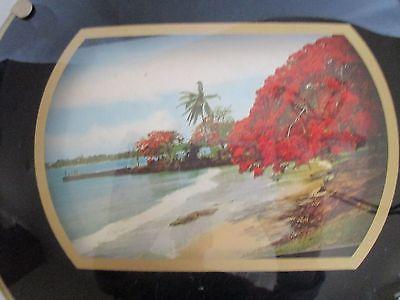 Vintage Jamaica Wall Plaque 8 1/2