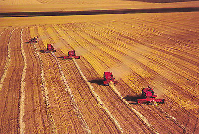 Combines on the Great Regina Plain - Sask. Canada Pre-Stamped 8c Postcard 1972