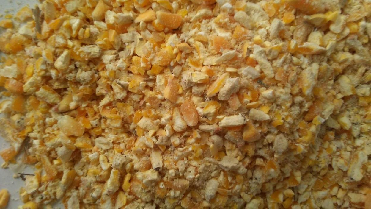 Cracked Corn, Deer, Corn, Squirrel Corn (25 lbs.) Wildlife Corn