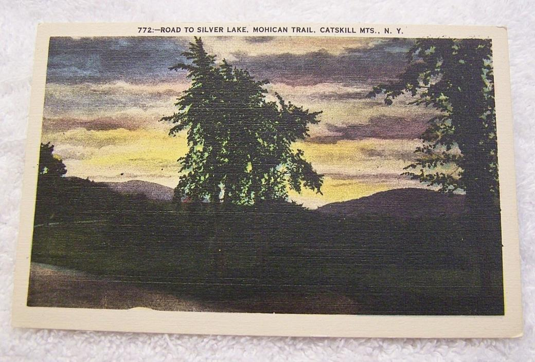 LINEN POSTCARD ROAD TO SILVER LAKE MOHICAN TRAIL CATSKILL MOUNTAINS NEW YORK P28