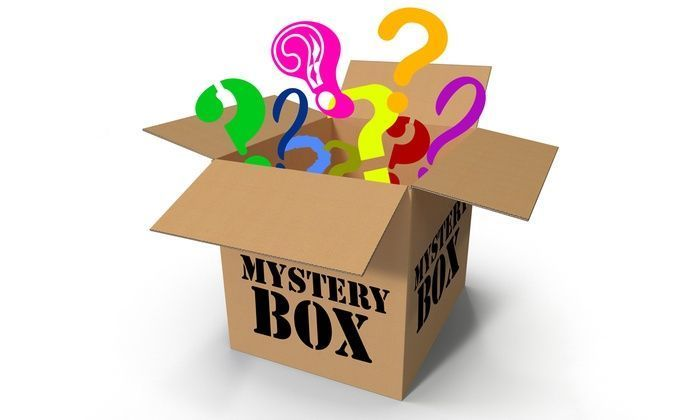 Random Mystery New With Tags Women Accesories and Clothing Lot Surprise Package