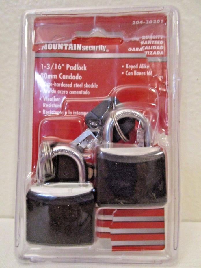 Mountain Security Small Padlocks with Keys 1 3/16