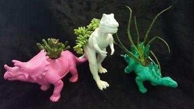 Dinosaur Pots