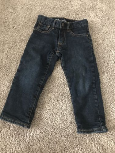 Boys Baby Gap 3T Winter Flannel Lined Jeans