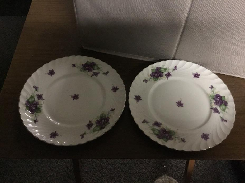 Vintage Set of Two Tea Cup Saucers