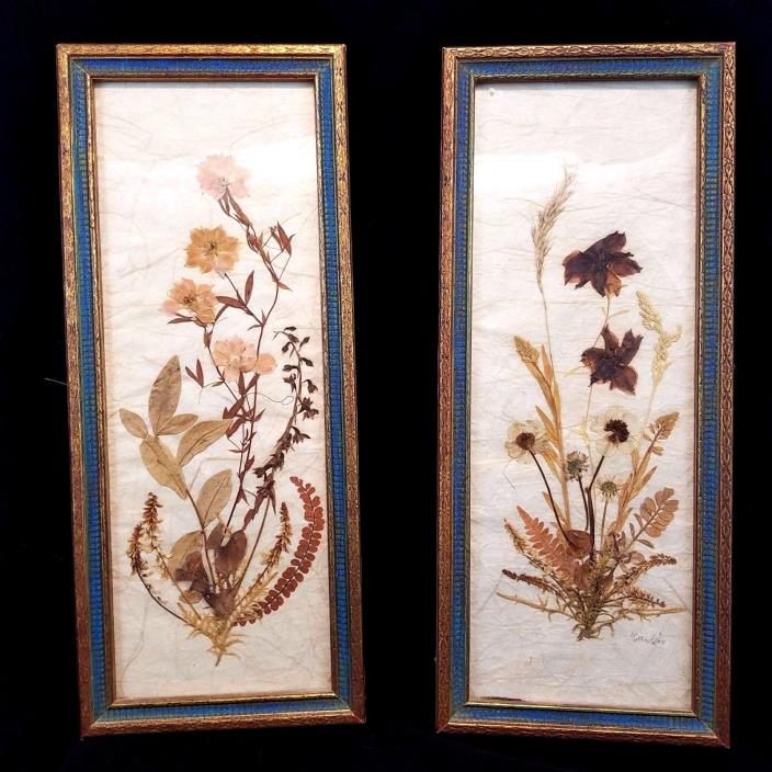 Vintage Dried Pressed Botanical Flowers Signed Carter Wood Frame Fleck Bros NYC