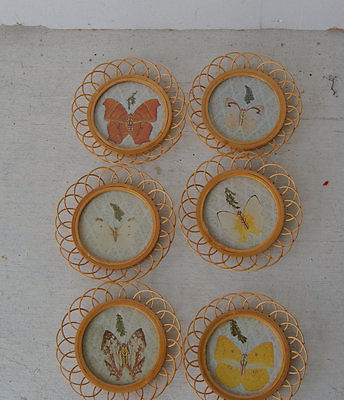 Vintage 1960s Butterfly Bamboo Six Coasters