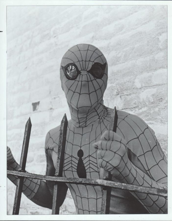 Amazing Spiderman 8x10 Black & white tv publicity photos - Lot of 5 different