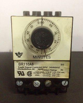 Eagle Signal Controls Timer BR110A6