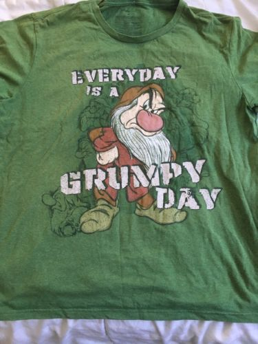 Disney Store Everyday Is A Grumpy Day Tee Shirt Size 2Xlarge