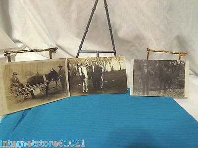 3 Early 1900s RPPC Photo Postcards Horses 1 with a stamp (1920)