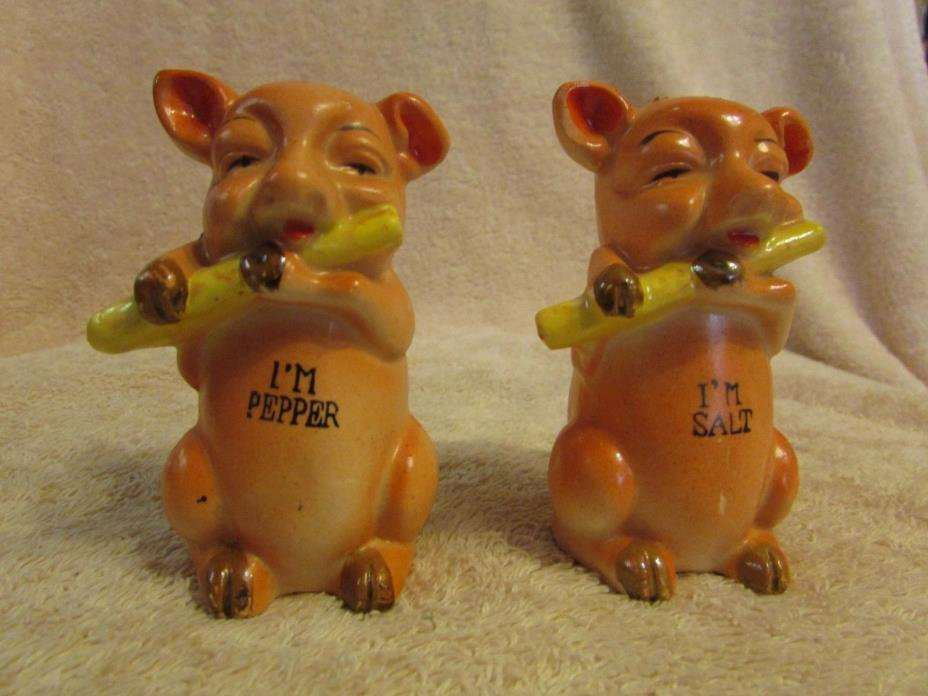Antique Pink Ceramic Pig Playing a Flute Salt & Pepper Shakers -