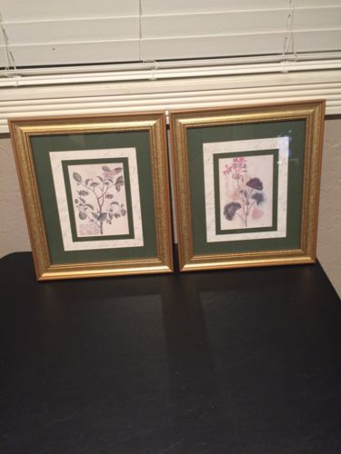 2 Wall Pictures Gold Frame With Green Border Geranium Home Or Office