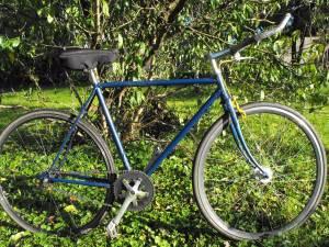 Vintage Fixed Gear Road Bike (52cm) (Baltimore)