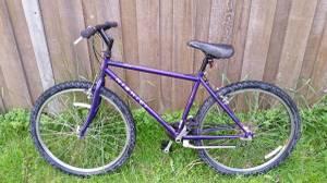 Nishiki Mountain Bike 26