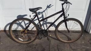 Vintage FS Elite Grand Teton Woman's Mountain Bike (SNH Nashua)