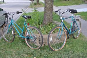 One Pair open road Mountain Bikes (Lincoln)