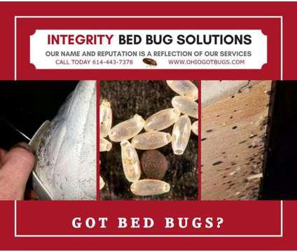 Bed Bug Exterminators in Columbus, Ohio
